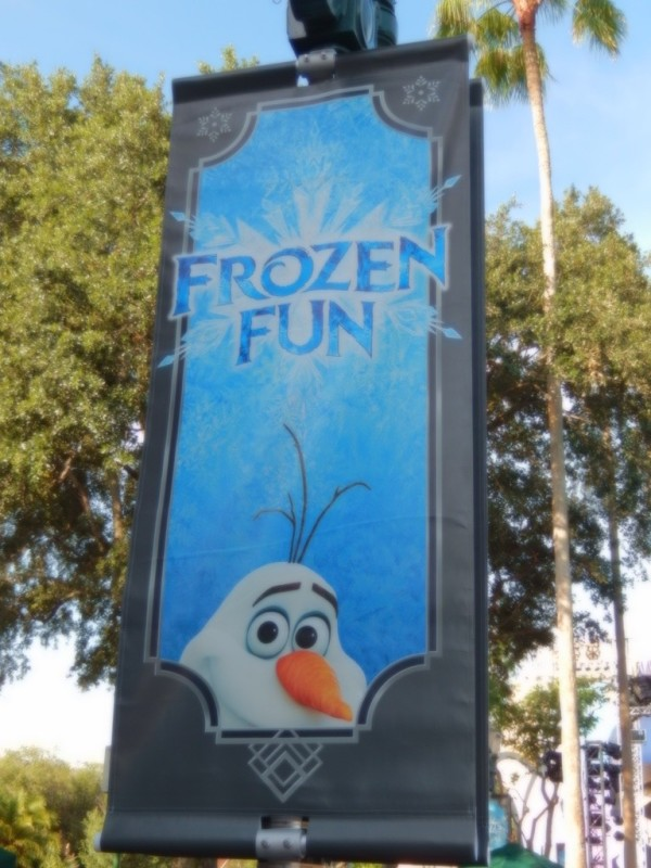Frozen Summer Fun005