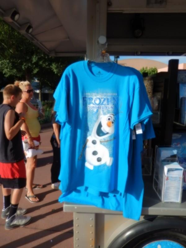 Frozen Summer Fun009