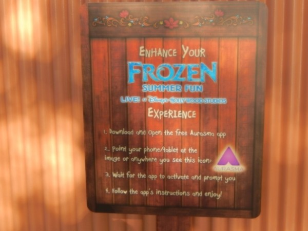Frozen Summer Fun017