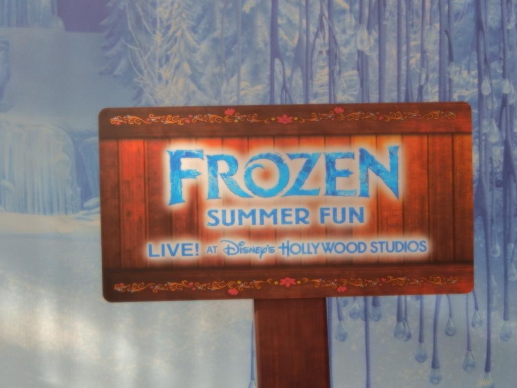 Frozen Summer Fun018