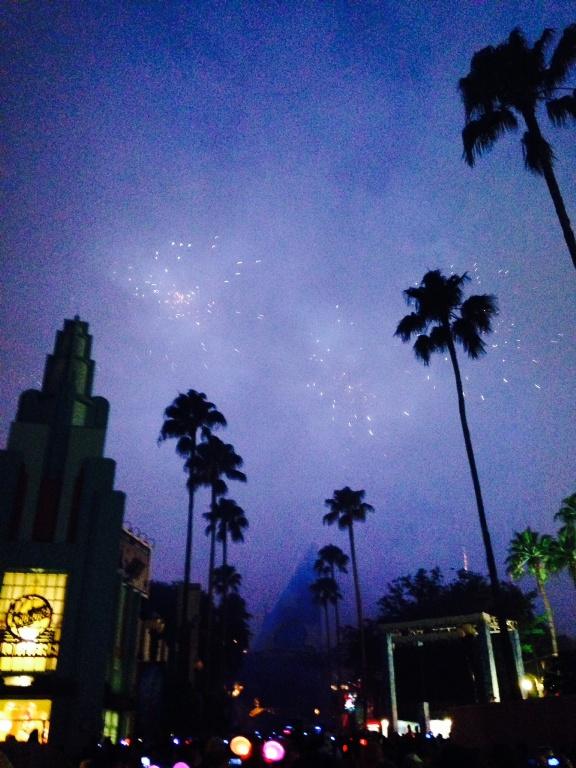 fireworks 2 (3)