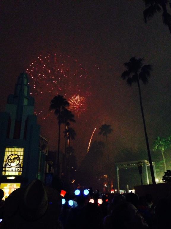 fireworks 3 (4)