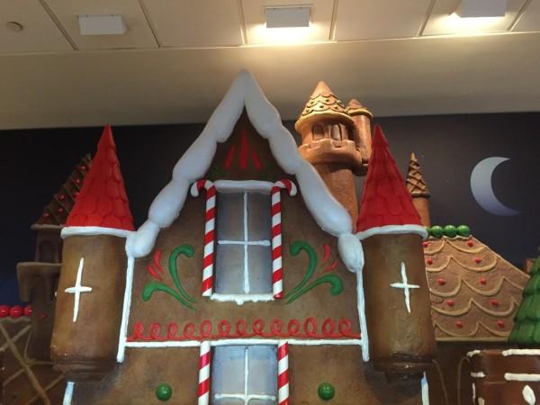 Disneyland Christmas Day 201418