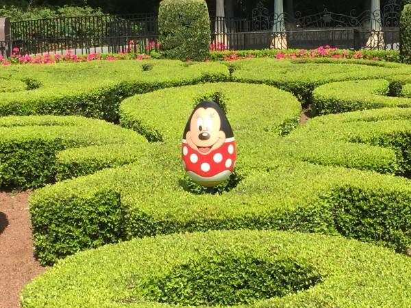 Walt Disney World 2015167