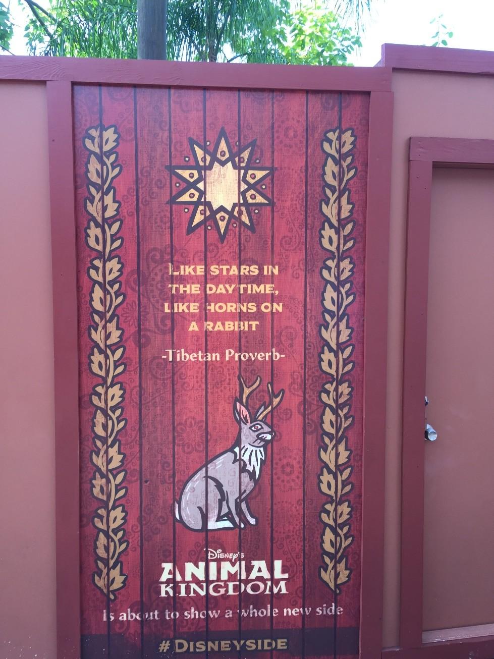 Disney S Animal Kingdom Quotes Wdw Daily News